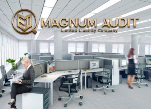 Логотип для аудиторской компании